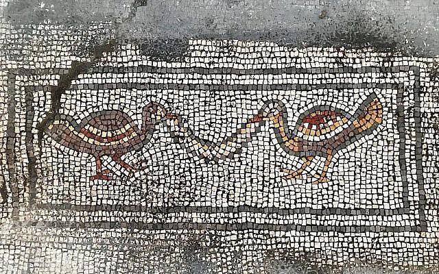 """Détail d'une mosaïque découverte dans """"l'église brûlée"""" du projet de fouilles Hippos-Sussita dans le parc national de Susita, été 2019. (Autorisation)"""