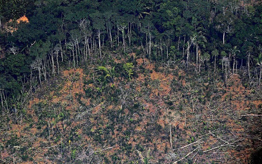 Une photo aérienne montrant une zone de déforestation dans la forêt amazonienne, à proximité d'un secteur affecté par les incendies, à 65 kilomètres environ de Porto Velho, dans le nord du Brésil, le 23 août 2019 (Crédit : CARL DE SOUZA / AFP)