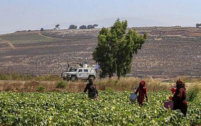 Des agriculteurs dans la plaine de Marjayou, aux abords du village libanais de Khlam, en face de la ville israélienne de Metula, le long de la frontière, le 26 août 2019. (Crédit : Mahmoud ZAYYAT / AFP)