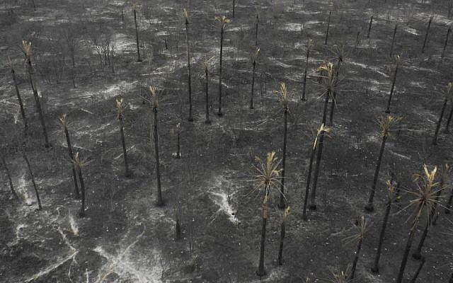 Vue aérienne des dégâts causés par les feux de forêts en Amazonie, au parc national Otuquis,, en Bolivie, le 26 août 2019. (Crédit : Pablo COZZAGLIO / AFP)