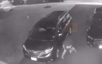 On peut voir un suspect en train de crever les pneus d'une voiture à Lakewood Township, New Jersey, le 10 août 2019. (Capture d'écran : Twitter)
