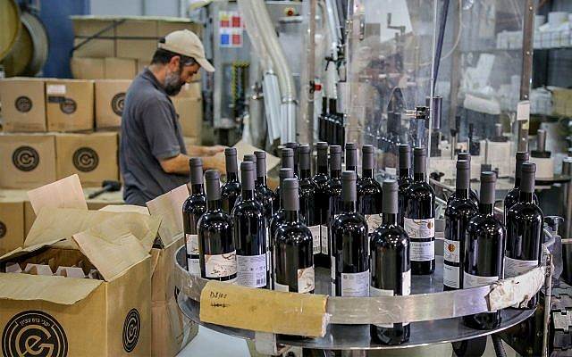 L'exploitation viticole Gush Etzion en Cisjordanie, le 18 juillet 2019. (Gershon Elinson/Flash90)