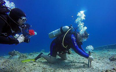 Des plongeurs chercheurs implantent des coraux imprimés en 3D dans la mer Rouge dans le cadre d'une étude menée par le programme de biologie marine et de biotechnologie de l'Université Ben Gurion et le Design-Tech Lab du Technion Israel Institute of Technology. (Jenny Tynyakov)