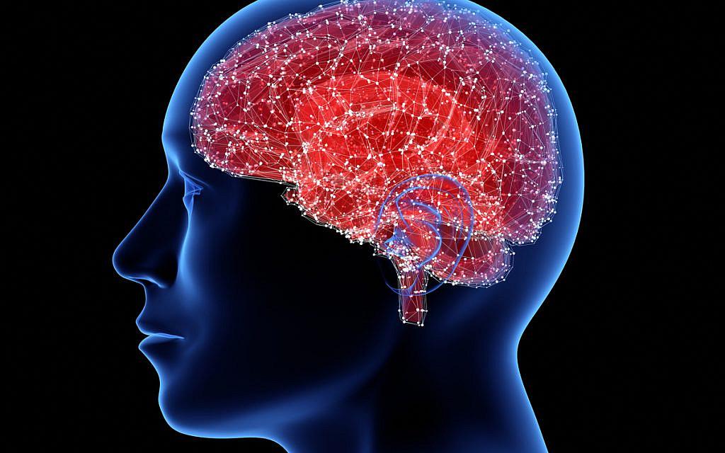 Le cerveau programmé pour éviter de penser à sa propre mort – Etude israélienne