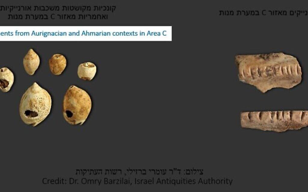 De gauche à droite : Ornements de coquillage issus des période des cultures Aurigacienne et Amarnienne dans la Zone C et pendentifs en ossements auriganiens  de la Zone C (Crédit : Docteur Omry Barzilai, Autorité des antiquités israéliennes)