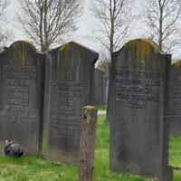 Un cimetière juif à Haarlem aux Pays-Bas, le 8 mars 2019.  (Cnaan Liphshiz via JTA)
