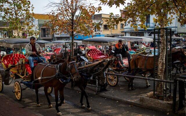 Vue générale d'un lieu où stationnenent des calèches, attendant des passagers, sur l'île de Buyukada, au large d'Istanbul, le 18 novembre 2019 (Crédit :   Yasin AKGUL / AFP)