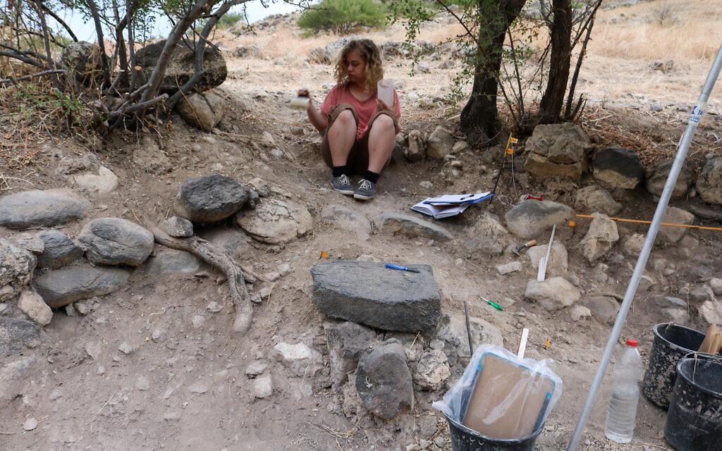 Un membre de l'équipe de fouilles sur le site archéologique d'Ein Gev, en 2018 (Crédit : Laure Dubreuil)
