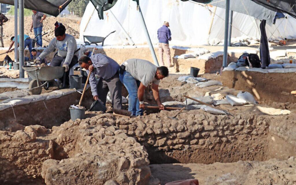 Les travaux sur le site de fouilles d'Ashkelon (Crédit : Anat Rasiuk, Israel Antiquities Authority)