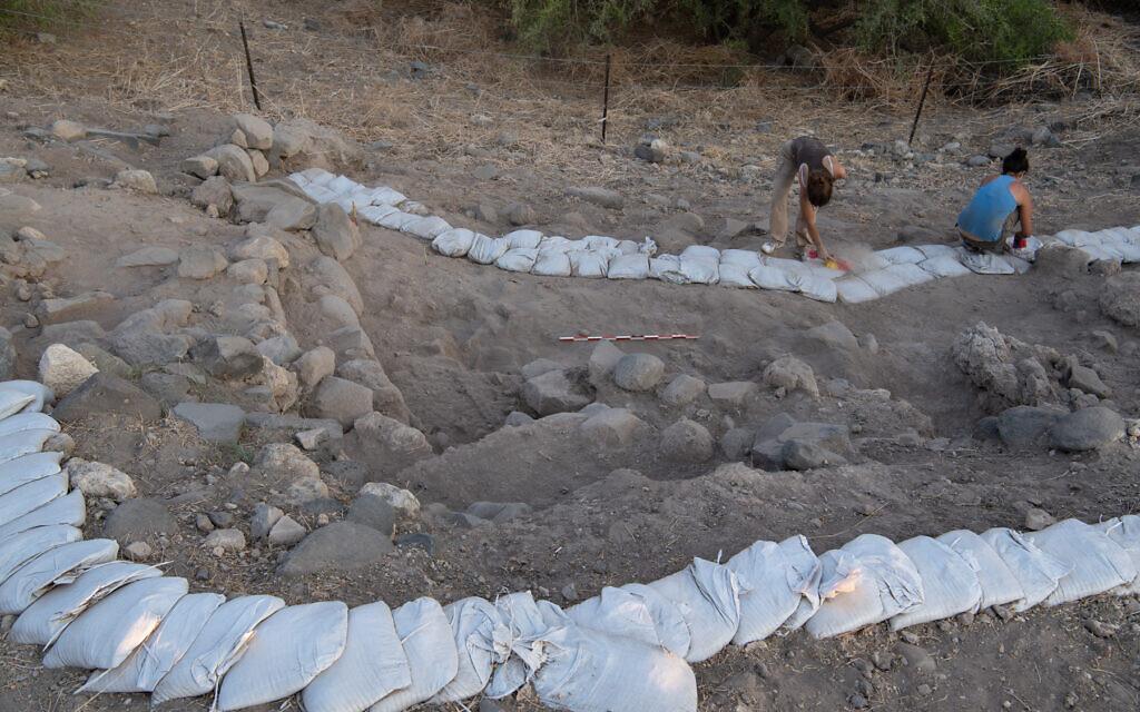 Les fouilles archéologiques d'Ein Gev , en 2018. (Crédit : Leore Grosman)