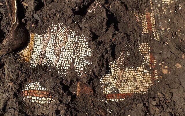 Les vestiges d'une mosaïque du 3è siècle dans une synagogue de la ville antique de Majdulia, sur le Golan (Autorisation)