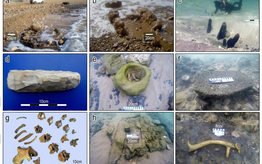 Photographies des découvertes effectuées dans l'implantation de Tel Hreiz. (a-b) exposition de structures construites en pierre en eau peu profonde. (c) poteaux  en bois enfoncés dans la mer (d) silex à deux faces d'herminette. (e) bol en grès in situ (f) pierre de fondement en basalte in situ  (échelle = 20cm); (g) ossements 1. (h) possible bombe en pierre - vue d'est (échelle = 20cm). (i) bois d'un daim mésopotamien in situ, Dama dama mesopotamica. (Toutes les photographies sont E. Galili à l'exception de l'image 3G de V. Eshed)