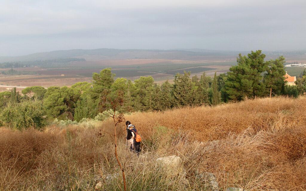 Le site de la forteresse de Latroun qui a été démoli par le légendaire général musulman Saladin à la fin des années 1100 (Crédit : Shmuel Bar-Am)