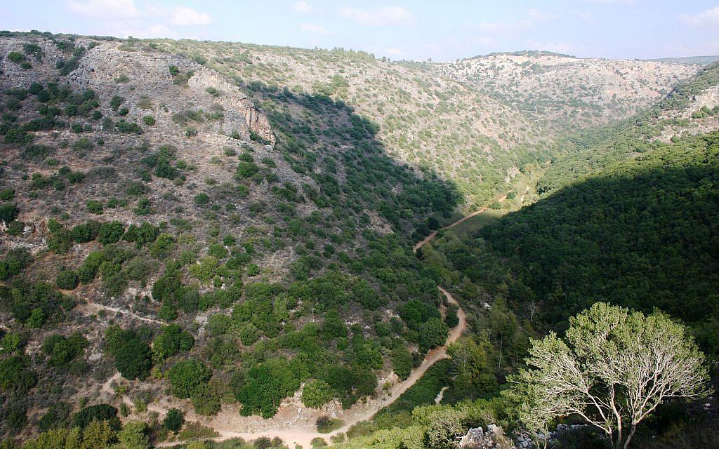 La vue depuis le bastion de Montfort dans le nord d'Israël (Crédit : Shmuel Bar-Am)