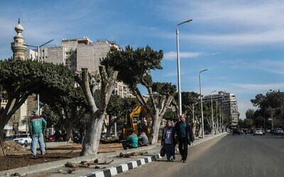 Arbres partiellement coupés et construction dans une rue d'Héliopolis, au Caire, la capitale égyptienne, le 27 janvier 2020. (Crédit : Mohamed el-Shahed / AFP)