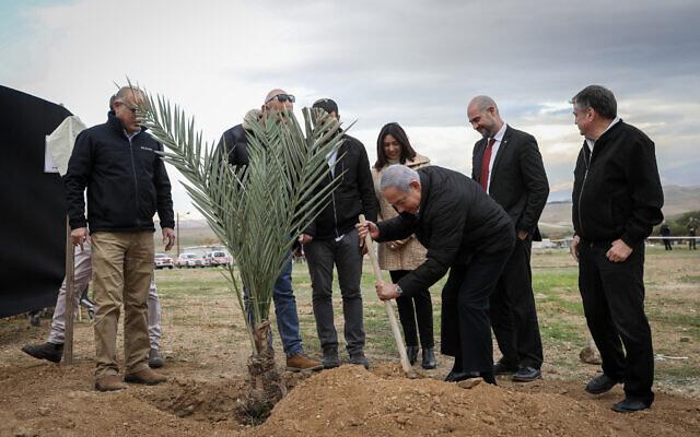 Le Premier ministre Benjamin Netanyahu plante un arbre au cours d'une cérémonie pour la fête juive de Tou Bichvat, dans l'implantation de Mevoot Yeriho, en Cisjordanie, dans la vallée du Jourdain, le 10 février 2020. (Crédit: Flash90)