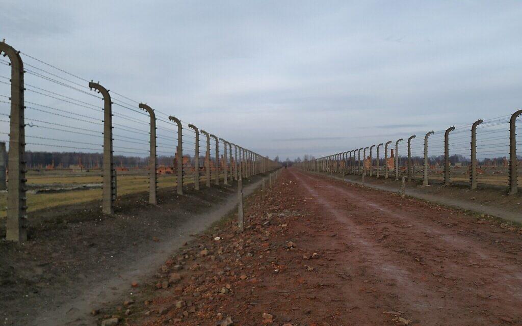 Des rangées de baraquements s'étendaient dans ces allées, qui furent rasés par les nazis en fuite, Auschwitz-Birkenau, Janvier 2020. (Yaakov Schwartz/ Times of Israel)