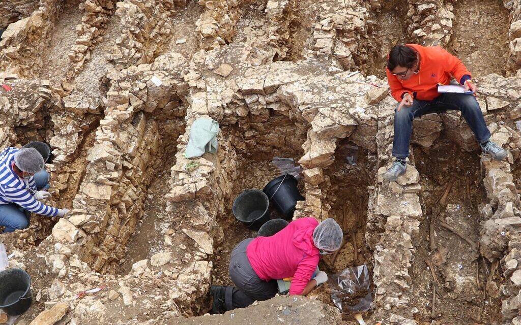 Campagne de fouille 2018 dans le présumé cimetière juif de Châteauroux. Vue des fosses en cours de fouille et disposées dans des rangées organisées. (Crédit : Philippe Blanchard/Inrap)