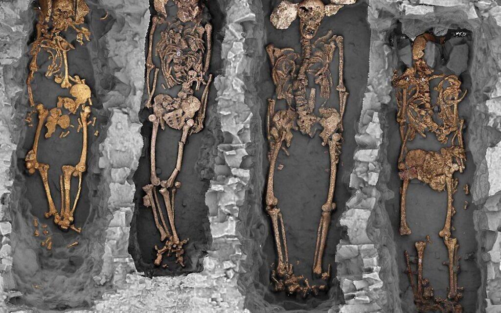 Campagne de fouille 2018 dans le présumé cimetière juif de Châteauroux. Vue groupée en occlusion ambiante des sépultures S28, S26, S32 et S38. On observe au niveau du crâne des calages avec des blocs calcaires. (Crédit : Philippe Blanchard/H. Holzem/Inrap)