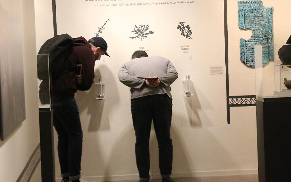 Des visiteurs sentent la myrrhe, l'encens et le baume exposés au Musée des pays de la Bible. (Shmuel Bar-Am)