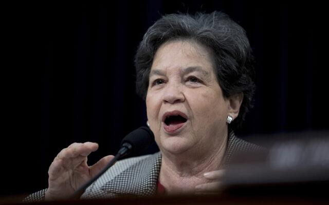 La représentante Lois Frankel, Démocrate de Floride,  s'exprime devant une sous-commission de la Chambre consacrée au budget au Capitole, à Washington, le 27 avril 2019 (Crédit : AP Photo/Andrew Harnik)