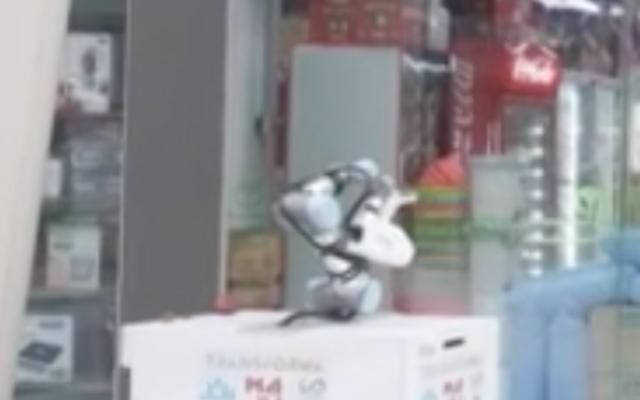 Capture d'écran du robot en action (Crédit : AFP)
