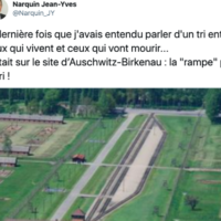 Le message Twitter de Jean-Yves Narquin, maire RN de la commune de Villedieu-le-Château (Loir-et-Cher), comparant les méthodes des nazis à Auschwitz-Birkenau avec le potentiel «tri» que doivent faire certains hôpitaux dans le cadre de l'épidémie de coronavirus. (Crédit : Twitter)