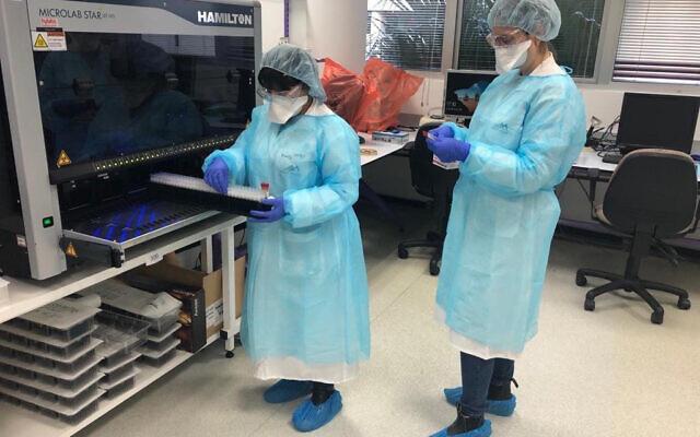 Des techniciens de laboratoire réalisent des tests de coronavirus. (Crédit : ministère de la Santé)