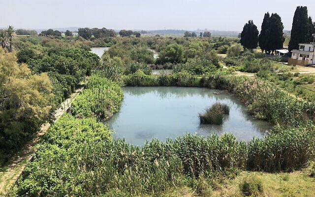 La réserve naturelle d'Ein Afek est fermée aux visiteurs depuis le 18 mars en raison du coronavirus. (Crédit : Sue Surkes/Times of Israel)
