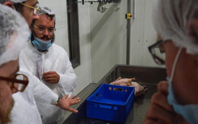 Des rabbins examinent la ligne de production de l'abattoir casher Quality Poultry KFT à Csengele, en Hongrie, en février 2017. (Crédit : Zsolt Demecs)