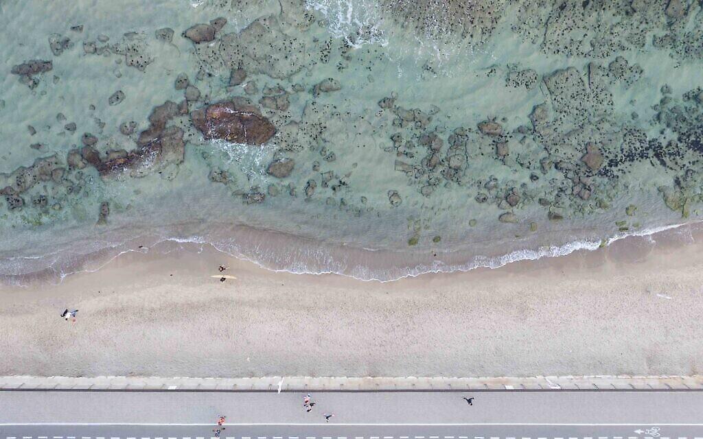 """La """"plage aux chiens"""", Tel Aviv, mai 2020. (Crédit : Lord K2)"""