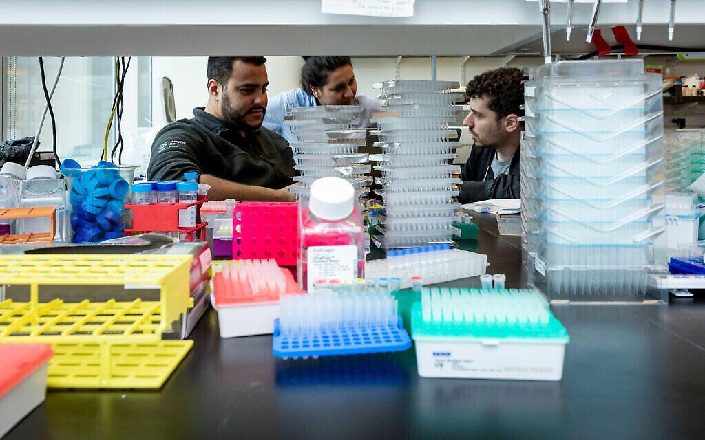 Omar Abudayyeh, à gauche, et Jonathan Gootenberg, à droite, dans leur laboratoire du MIT, le 31 octobre 2019 (Crédit : McGovern Institute for Brain Research at MIT/ Photo by Caitlin Cunningham Photography)