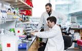 Jonathan Gootenberg, assis, et Omar Abudayyeh, debout, dans leur laboratoire du MIT, le 31 octobre 2019 (Crédit : McGovern Institute for Brain Research at MIT/ Photo by Caitlin Cunningham Photography)