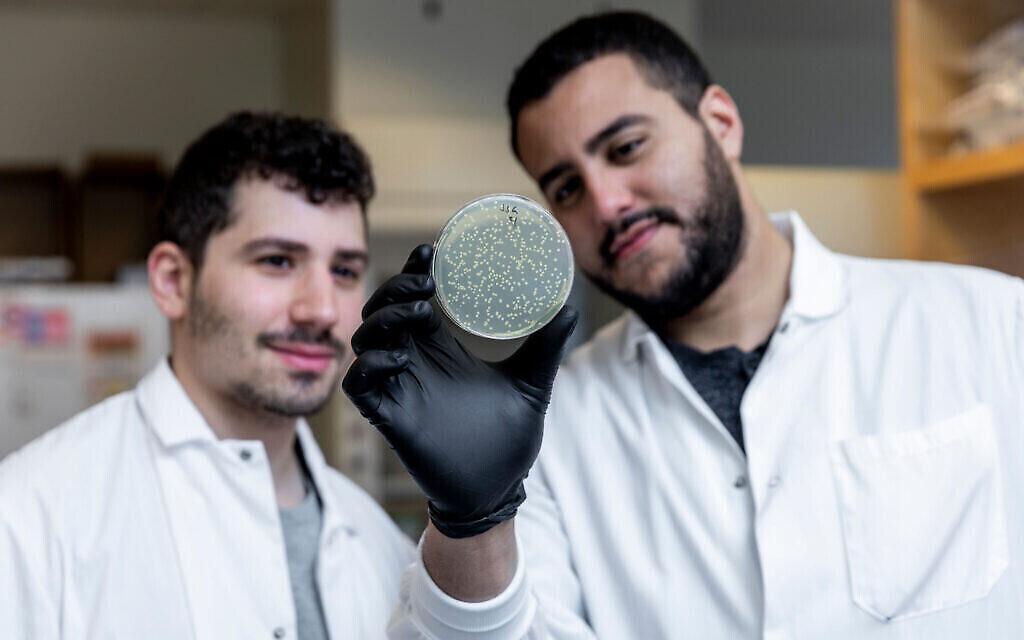 Jonathan Gootenberg, à gauche, et Omar Abudayyeh, à droite, dans leur laboratoire, le 31 octobre 2019 (Crédit : McGovern Institute for Brain Research at MIT/ Photo by Caitlin Cunningham Photography)