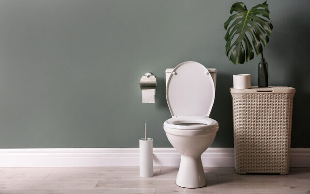 Illustration : Une cuvette de toilettes dans une salle de bains. (belchonock ; iStock via Getty Images)