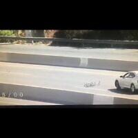 Capture d'écran d'une famille de canards traversant l'autoroute (Capture d'écran)
