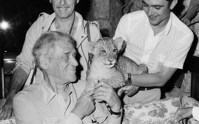 Deux admirateurs offrent un lionceau à Joseph Kessel dans un restaurant de Nice, le 7 juillet 1969. (Crédit : AFP)