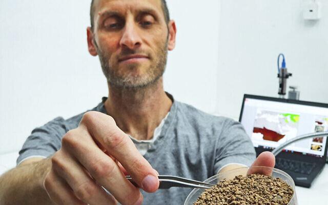 Lior Weisbrod, archéologue de l'IAA, avec de minuscules fossiles de rongeurs provenant des fouilles. (Yoli Schwartz, Autorité israélienne des Antiquités)
