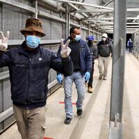 Des ouvriers palestiniens entrent en Israël à travers le poste-frontière de Mitar, dans le sud de la Cisjordanie, le 5 mai 2020. (Crédit : Wisam Hashlamoun/Flash90)
