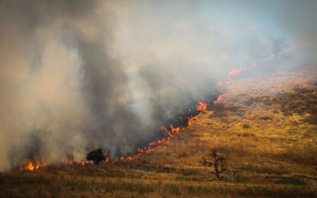 Un grand feu de forêt près de Kiryat Tivon, le 1er juin 2020. (Yossi Zamir/Flash90)