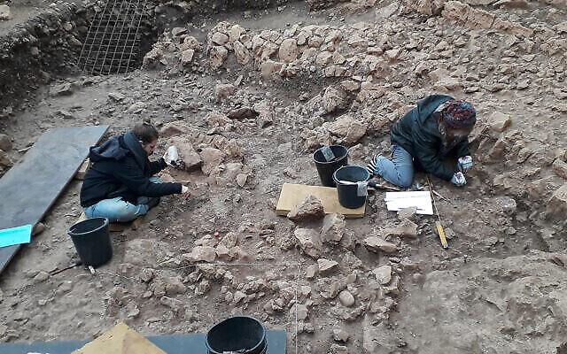 Des chercheurs de l'université de Haïfa déterrent des restes d'un site du Natoufien dans la région du Mont Carmel, au nord d'Israël. (Autorisation/Reuven Yeshurun, Université de Haïfa)