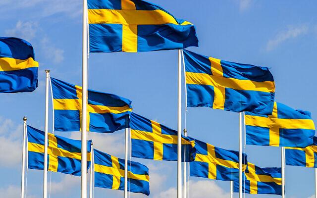 Des drapeaux suédois lors de la fête nationale (TT; iStock by Getty Images)