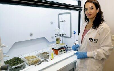 La professeure Hadas Mamane produit de l'éthanol à partir de déchets au laboratoire de l'Université de Tel Aviv, le 8 juillet 2020. (JACK GUEZ / AFP)