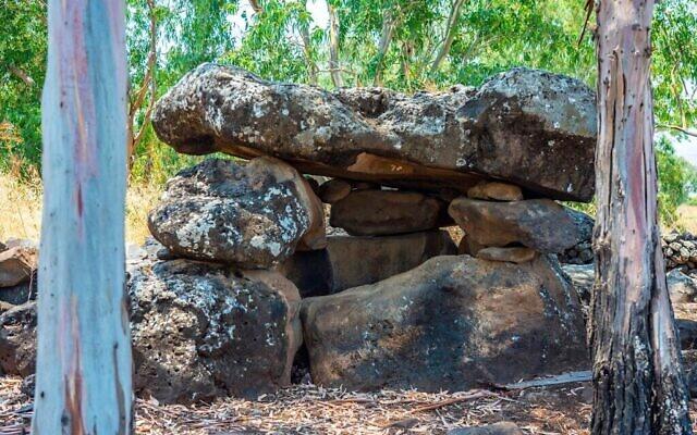 Un dolmen dans la réserve naturelle de Yehudiya. (Yaniv Berman/ Autorité israélienne des Antiquités)