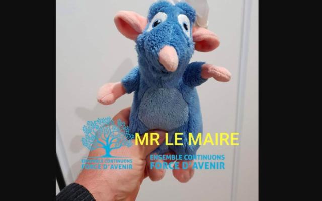 La photo partagée par Sylvain Husson, animateur du comité LREM de Mions, sur Facebook. (Crédit : Facebook)