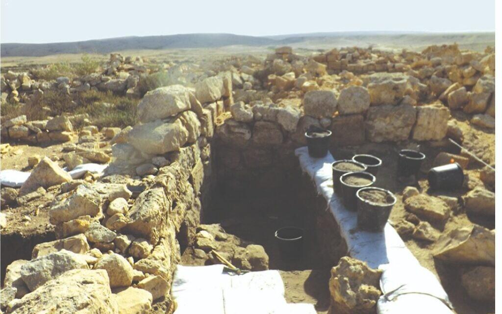 Monticules d'ordures à la périphérie de Tel Nitsana, ville du Néguev de l'époque byzantine. (Guy Bar-Oz/Université de Haïfa)