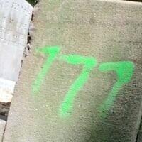 Capture d'écran d'une vidéo montrant un symbole de haine taggué sur deux cimetières à Richmond, en Virginie, le 3 août 2020. (Richmond Times-Dispatch via JTA)