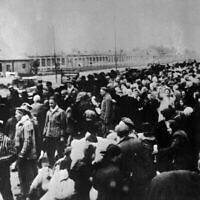 Des victimes à destination du camp de concentration d'Auschwitz, alignés à la gare à l'arrivée à Auschwitz. Une photographie prise par les nazis au début de la Seconde Guerre mondiale. (AP PHOTO/FILE)
