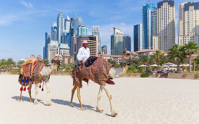 Un guide touristiqe propose un tour en chameau aux touristes sur la plage de Jumeirah à Dubai, aux Emirats arabes unis, en janvier 2016. (kasto80; iStock by Getty Images)