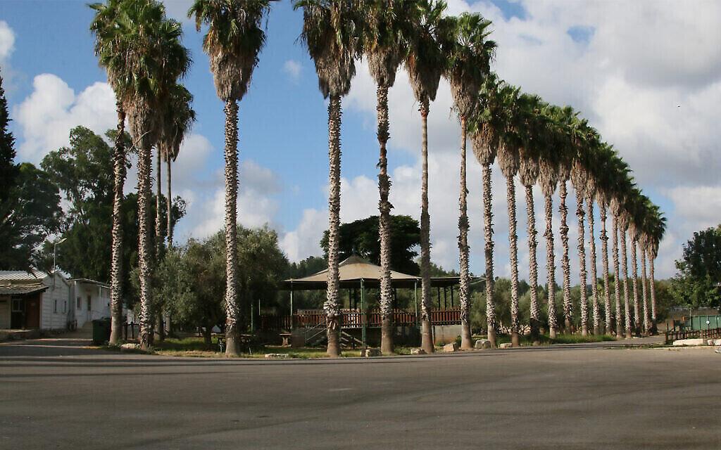 Une aire de pique-nique dans le jardin archéologique de Givat Yeshayahu. (Shmuel Bar-Am)